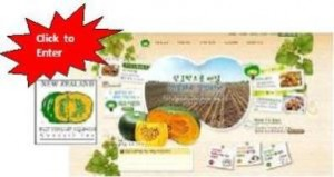 Korean nzbsc webpage with star - resized